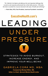 Leading Under Pressure®: Strategies to Avoid Burnout, Increase Energy and Improve Your Wellbeing by Gaby Cora